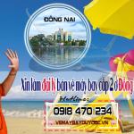 Xin làm đại lý Bán vé máy bay cấp 2 ở Đồng Nai thế nào?