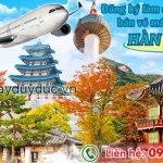 Đăng ký làm đại lý bán vé máy bay đi Hàn Quốc tại Duy Đức