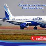 Đăng ký làm cộng tác viên hãng Indigo Airlines