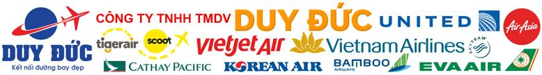 Đại lý vé máy bay Việt Mỹ cấp 1 các hãng hàng không