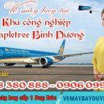 Vé máy bay tại Khu công nghiệp Mapletree Bình Dương – Việt Mỹ
