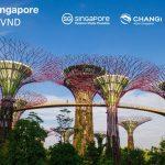 Khám phá Singapore với giá vé ưu đãi chỉ từ 3,600,000 VND khứ hồi