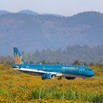 Vietnam Airlines giảm tần suất bay nội địa để phòng chống dịch Covid-19